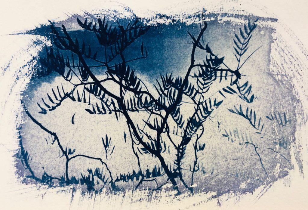 2020_Serie Cianotipia, Naturaleza sobre papel.